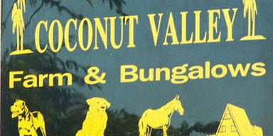 Coconut Valley